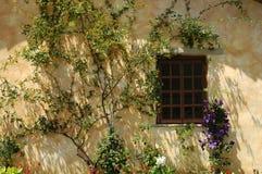 morgonfönster royaltyfria bilder