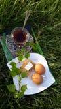 Morgonfrukost Fotografering för Bildbyråer