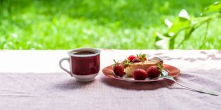 Morgonfrukost som av ostkaka, flera jordgubbar på den enkla plattan och 1 vit-röda kopp kaffe på de mjuka rosa färgerna royaltyfria bilder