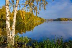 Morgonhöstreflexioner på den svenska sjön Royaltyfri Bild