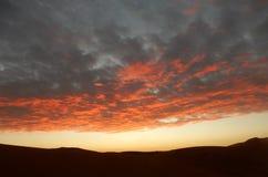 Morgonhimmel över Sahara Arkivfoton