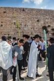 Morgonhöst Sukkot i Jerusalem Arkivfoto