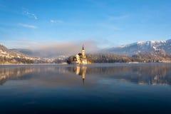 Morgonidylle på den blödde sjön Arkivbild