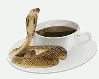 Morgonkaffe med en ormkyss vektor illustrationer