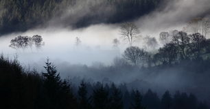 Morgonlandskap Royaltyfria Foton