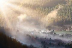 Morgonlandskap Arkivbild