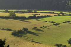 Morgonlandskap i den lägre flodWyedalen Arkivbilder