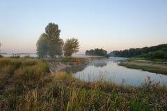 Morgonlandskap med dimma Arkivfoto