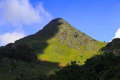Morgonljus över vildblommorna och berget Arkivfoto
