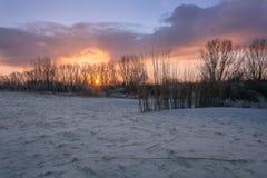 Morgonljus i Holland Royaltyfri Bild