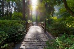 Morgonljus på bron Royaltyfri Fotografi