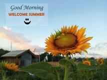 Morgonmeddelande Bra morgon för sommarhälsningar, välkommen sommar med att le emoticonen som välkomnar ny säsong och härligt royaltyfri fotografi