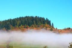 Morgonmist i Carpathiansna Arkivbilder