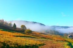 Morgonmist i Carpathiansna Royaltyfria Foton