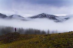 Morgonmist i Yellowstone berg Royaltyfri Foto