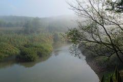 Morgonmist och flod Arkivfoton