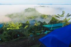 Morgonmist på berget som är dimmigt i vintern, misten och clouen royaltyfri foto