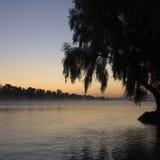 Morgonmist på floden Arkivfoton