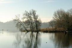 Morgonmist på sjön Fotografering för Bildbyråer