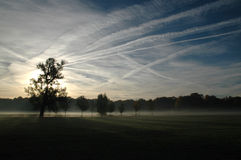 morgonpark royaltyfri fotografi