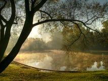 morgonpark Arkivfoton