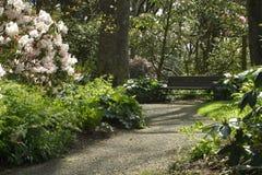 morgonpark royaltyfria bilder