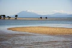 Morgonritt, Port Douglas Royaltyfri Foto