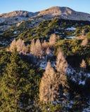 Morgonsikt från Komna Arkivbild