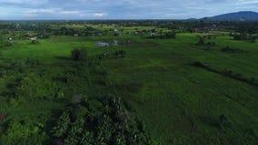 Morgonsikt på Sabah lager videofilmer