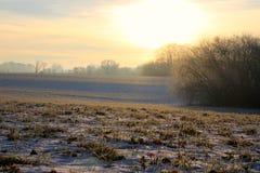 Morgonskönhet i Februari Fotografering för Bildbyråer