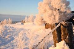 Morgonsol på Frosty Chain Royaltyfri Fotografi
