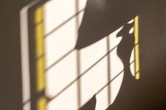 Morgonsolljus som kommer till och med fönstret och sol-belysningen en lampa som skapar solbelyst lampskugga på väggen arkivfoto