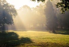 Morgonsolljusnedgångar. Royaltyfri Bild