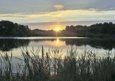 Morgonsoluppgång över sjön med vasser royaltyfri fotografi