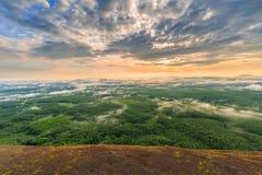 Morgonsoluppgång och dimmigt av trädet vaggar Arkivbild