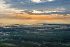 Morgonsoluppgång och dimmigt av trädet vaggar Arkivfoton