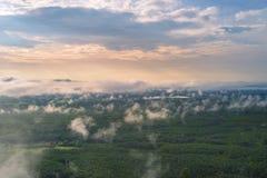 Morgonsoluppgång och dimmigt av trädet vaggar Arkivfoto