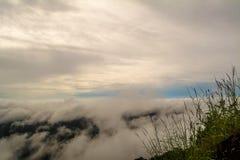 Morgonsoluppgång på berget med havet av dimma- och trädbakgrund Arkivfoto