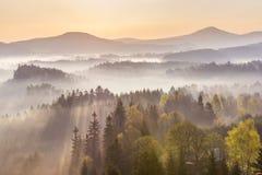 Morgonstrålar Royaltyfri Fotografi