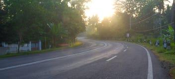 Morgonväg arkivfoton