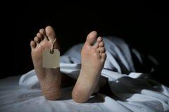 morgue Fotografie Stock