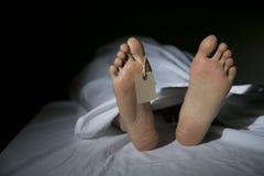 morgue Fotografia Stock