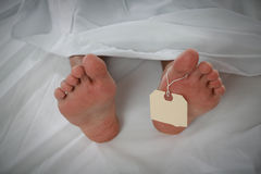 Morgue. A morgue showing the feet of a dead person Royalty Free Stock Images