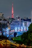 Night view at Mori Garden during winter illumination with Tokyo tower as background, Tokyo, Japan. royalty free stock photography