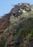 Morialta Rock Formation. Shaped like a face in Adelaide South Australian Stock Images