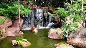 Morikami Museum and Japanese Garden Delray Beach Florida. This one of the waterfalls at Morikami Gardens in Delray Beach Florida. Established in 1977 it has stock video
