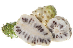Morinda citrifolia fruit Royalty Free Stock Photos