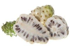 Morinda citrifolia fruit Royalty Free Stock Photos