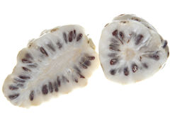 Morinda citrifolia fruit Royalty Free Stock Image