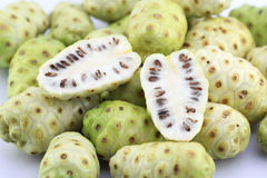 Morinda citrifolia or noni Stock Images